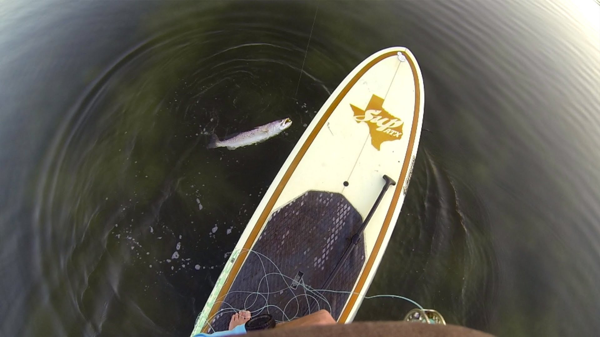Gopro Paddle Board Fishing Commercial Song